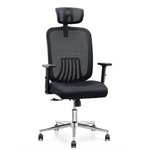 Cedric Ergonomic Mesh Office Chair